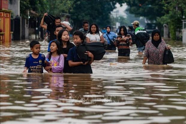 印尼东部巴布亚省暴雨引发洪灾已致40多人死亡 hinh anh 1