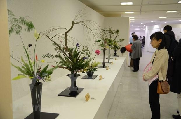 越南首次参加日本关西地区花道展览会 hinh anh 1