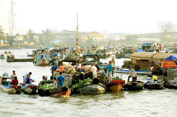 九龙江三角洲有望成为亚洲第一沿河目的地 hinh anh 2