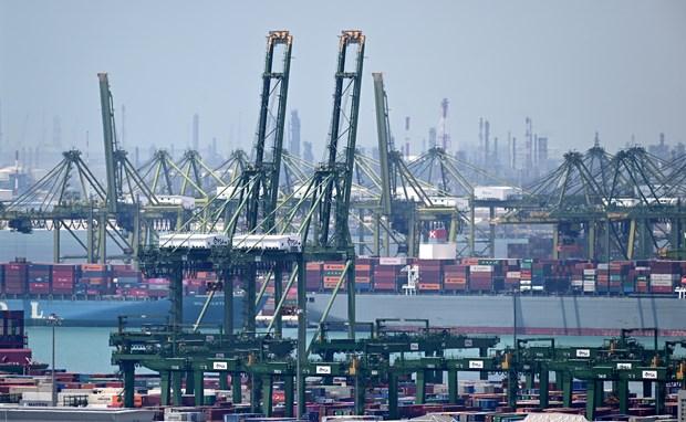 新加坡2月非石油产品国内出口增幅回升 hinh anh 1