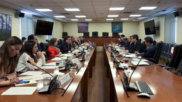 越南外交部副部长裴青山对智利进行访问 hinh anh 2