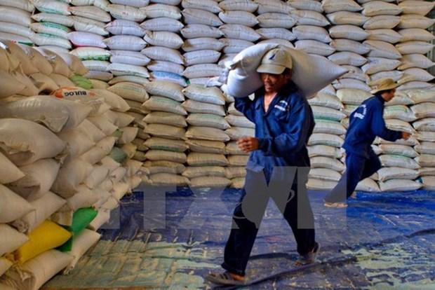 2019年前2月越南大米出口量达71.18万吨 创汇3.12亿美元 hinh anh 1