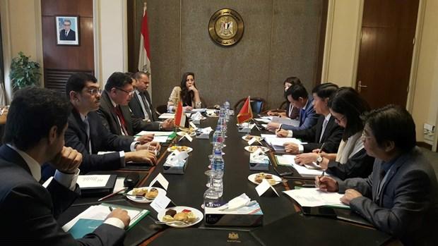 """越南在埃及""""向东看""""政策中占有核心地位 hinh anh 1"""