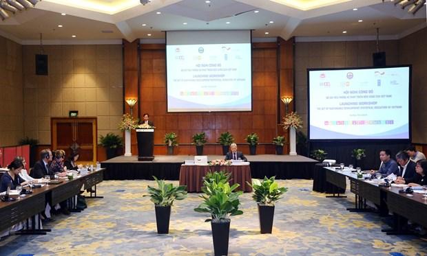 越南发布可持续发展统计指标 hinh anh 2
