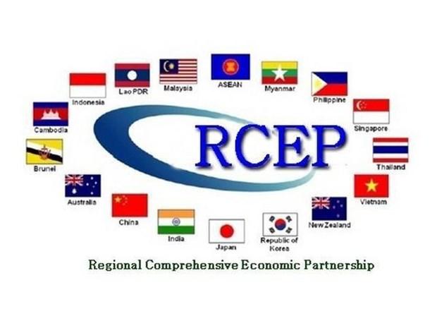 新加坡希望RCEP谈判将于今年内完成 hinh anh 1