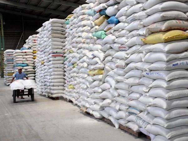 瞄准潜在市场 促进大米出口 hinh anh 1