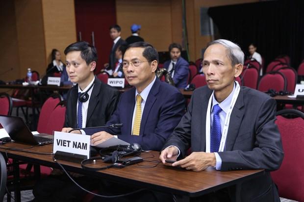 越南外交部副部长裴青山:南南合作应促进加强团结和发展中国家的共同利益 hinh anh 2