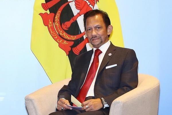 文莱苏丹哈桑纳尔即将对越南进行国事访问 hinh anh 1