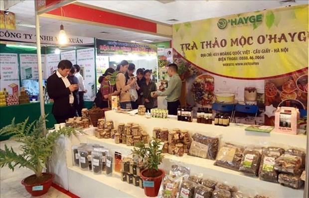 越南第一届全国传统医药材料和医药产品展在河内开展 hinh anh 2