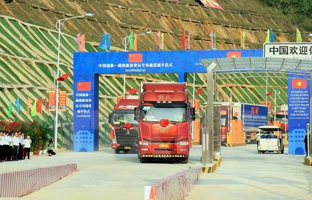 (越南)新青—(中国)浦寨货运专用通道正式通车 hinh anh 1