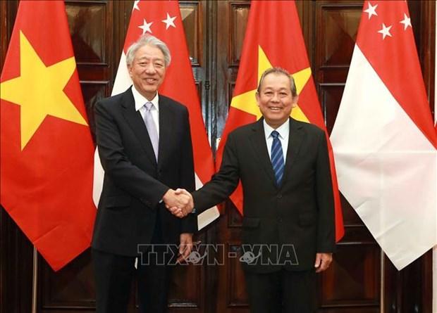 进一步促进越南与新加坡战略伙伴关系 hinh anh 1