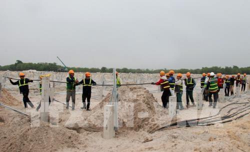广治省首家太阳能发电厂将于今年6月投入运营 hinh anh 2