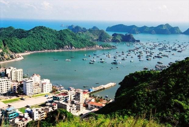 越南旅游:海防市着力促进海洋岛屿旅游发展 hinh anh 1