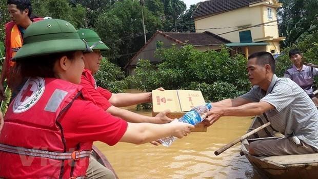 越南与中国红十字会加强合作提高人道主义救助工作效益 hinh anh 1