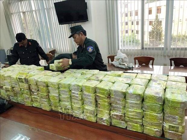公安部对特大跨境贩运毒品近600公斤案件作出起诉决定 hinh anh 1