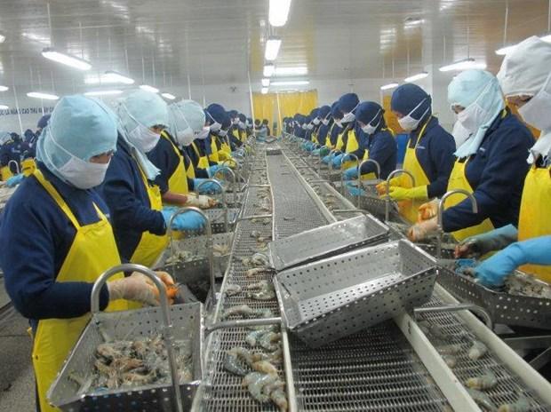 朔庄省努力实现出口额达10亿美元 hinh anh 1