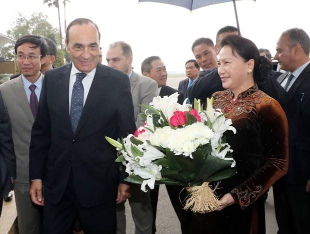 越南国会主席阮氏金银开始对摩洛哥王国进行正式访问 hinh anh 1