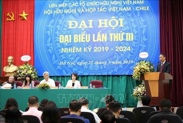 进一步增强越南与智利两国人民的团结与友谊 hinh anh 1