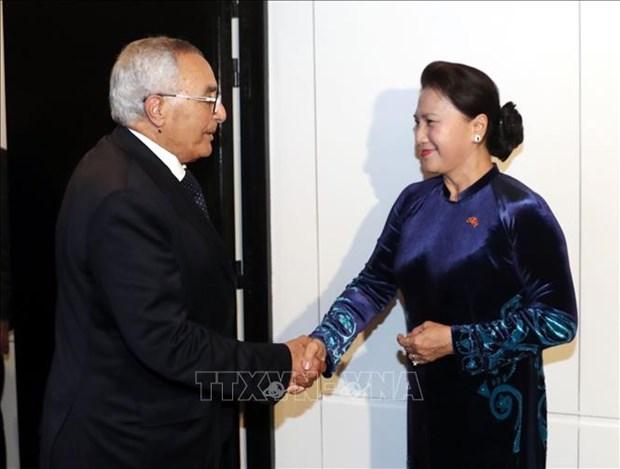 越南国会主席阮氏金银会见摩洛哥-越南友好协会主席穆斯塔法 hinh anh 1