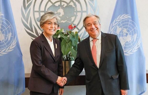 联合国与东盟支持推动朝鲜半岛无核化进程 hinh anh 1