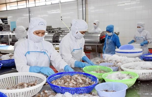 越南努力加强对中国的农产品出口 hinh anh 2