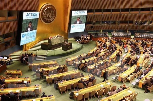 越南重申积极参加联合国维和行动的承诺 hinh anh 2