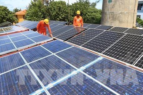 仁海太阳能发电厂将在宁顺省动工兴建 hinh anh 1