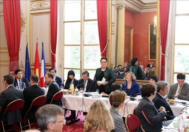 国会主席阮氏金银会见法越议员友好小组和法国企业代表 hinh anh 1