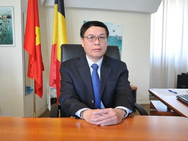 越南国会与欧洲议会在提升越南与欧盟关系水平中扮演重要作用 hinh anh 1