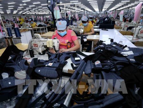 今年第一季度同奈省实现贸易顺差6.9亿美元 hinh anh 1