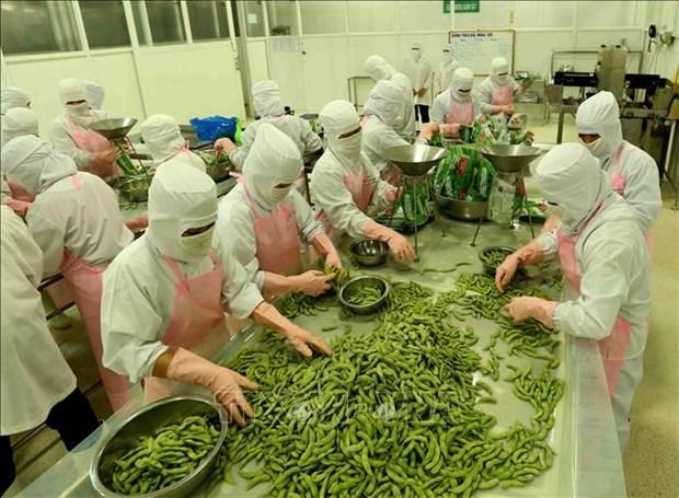 安江省主要商品出口额增加 hinh anh 1