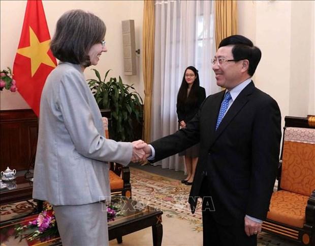 越南政府副总理兼外交部长范平明会见加拿大驻越特命全权大使 hinh anh 1