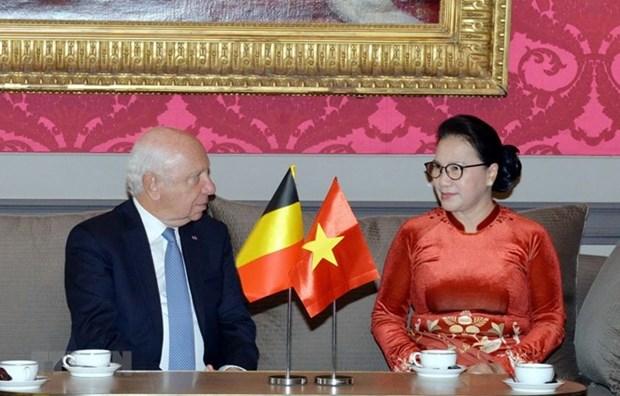 越南国会主席会见比利时联邦参议长布罗奇 hinh anh 1
