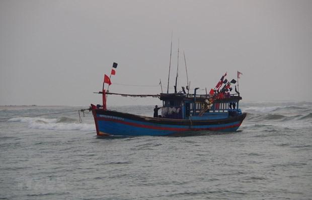 海上遇险的载有22名渔民的3艘渔船获救 hinh anh 1