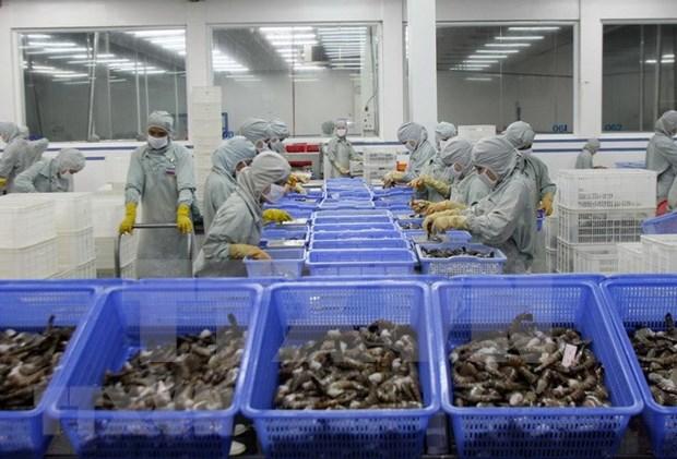 越南虾类产品对日本出口恢复增长 hinh anh 2