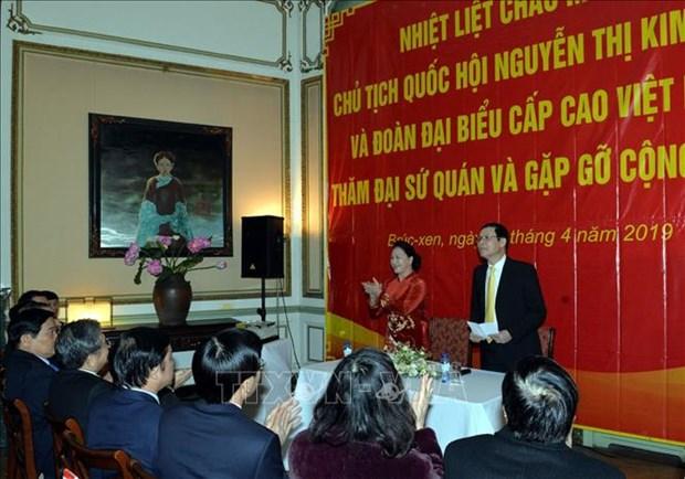 越南国会主席阮氏金银会见旅居比利时越南人代表 hinh anh 2
