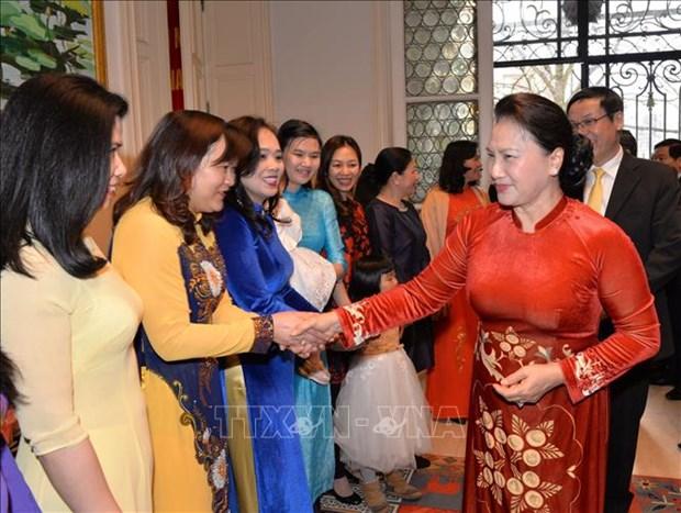 越南国会主席阮氏金银会见旅居比利时越南人代表 hinh anh 1
