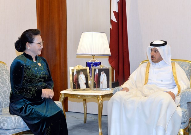 越南国会主席阮氏金银会见卡塔尔首相阿勒萨尼 hinh anh 2