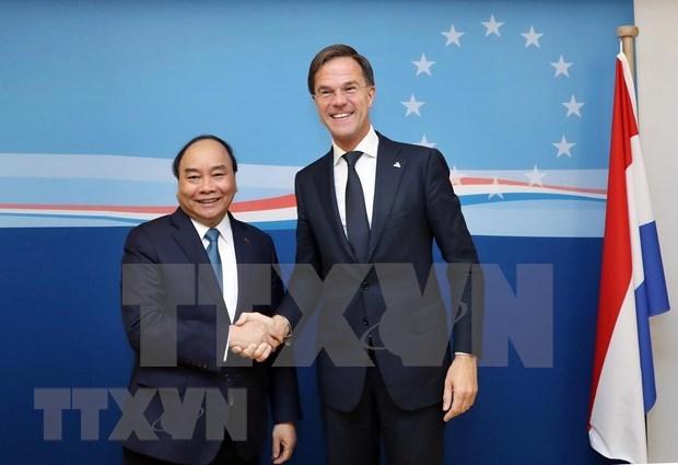 荷兰驻越南大使:荷兰首相越南之旅有助于深化在新形势下的越荷伙伴关系 hinh anh 1