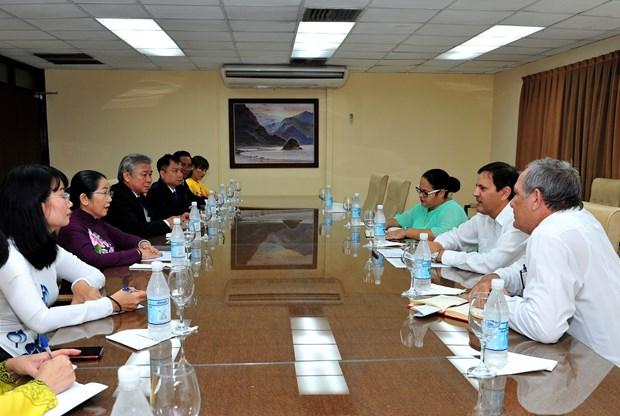 胡志明市寻找与古巴各地方的合作机会 hinh anh 1