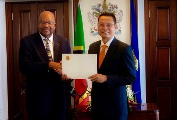 越南与圣基茨和尼维斯联邦合作潜力有待挖掘 hinh anh 1