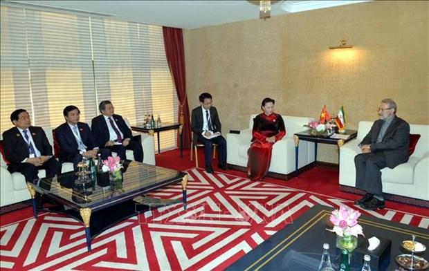 越南国会主席阮氏金银会见伊朗伊斯兰共和国议会议长阿里•拉里贾尼 hinh anh 2