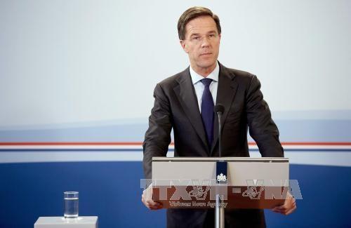 荷兰首相马克·吕特开始对越南进行正式访问 hinh anh 1