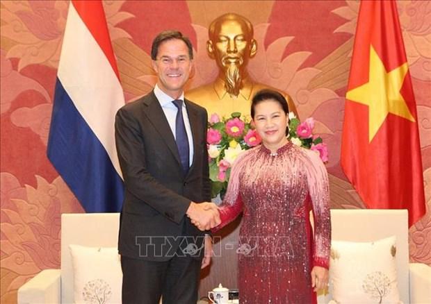 越南国会主席阮氏金银会见荷兰首相马克·吕特 hinh anh 1
