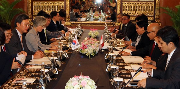 韩国与印尼就促进双边关系达成一致 hinh anh 1