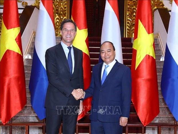 越南与荷兰发表联合声明 将两国关系提升至全面伙伴关系 hinh anh 1