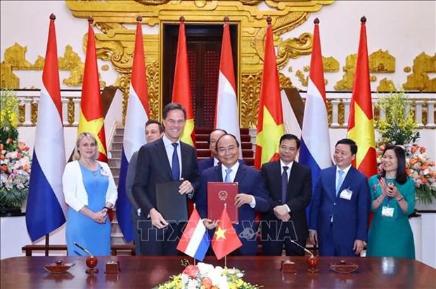 越南政府总理阮春福与荷兰首相马克·吕特举行会谈 hinh anh 3