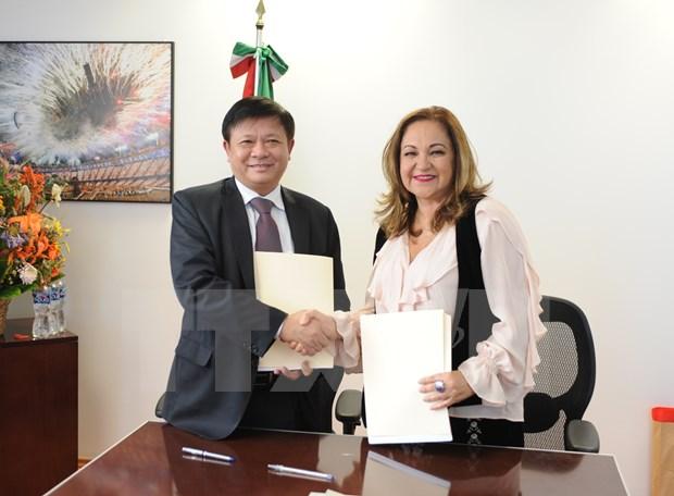 越通社与墨西哥国家通讯社同意加强合作 hinh anh 1