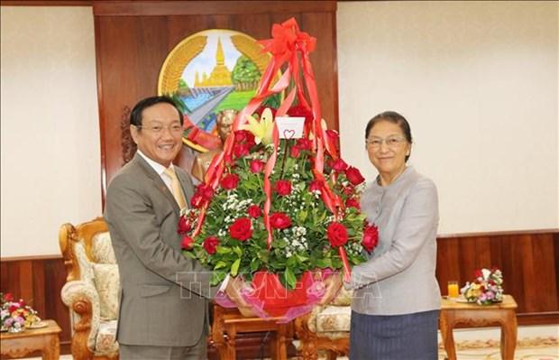 越南党和国家领导人向老挝党和国家领导人致以新年的美好祝福 hinh anh 1