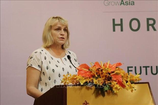 荷兰在越南分享种植领域的发展经验 hinh anh 1